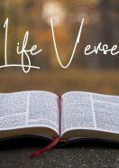 Life Verse Part 2